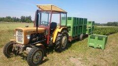 Ursus C-330 & przyczepa sadownicza