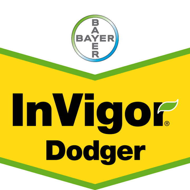 InVigor_Doger_szewron_Colorbgr_CMYK.png