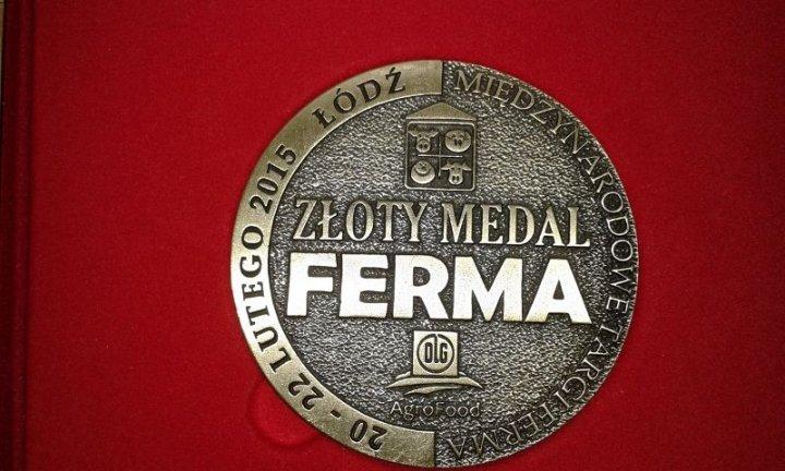 Złoty Medal FB 2015.jpg