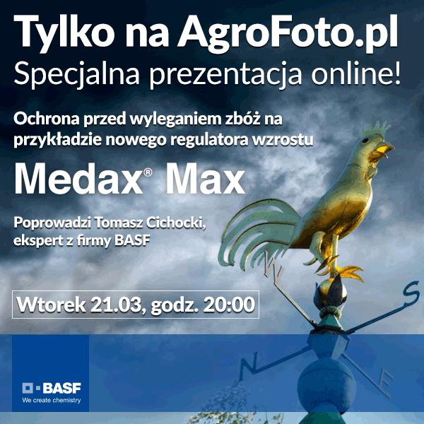 BASF–webinarium_600x600.png