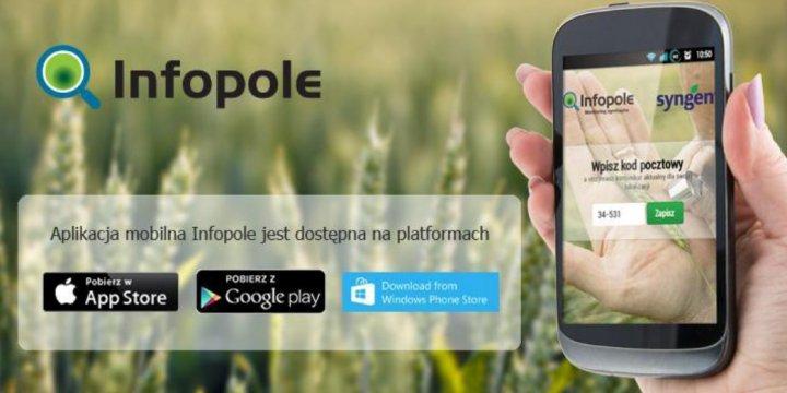infopole2.jpg