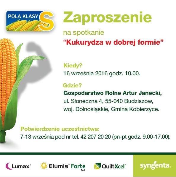 Zaproszenie Syngenta 16 września - Pola Klasy S - kukurydza .JPG