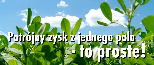 blog-0118055001493368234.jpg