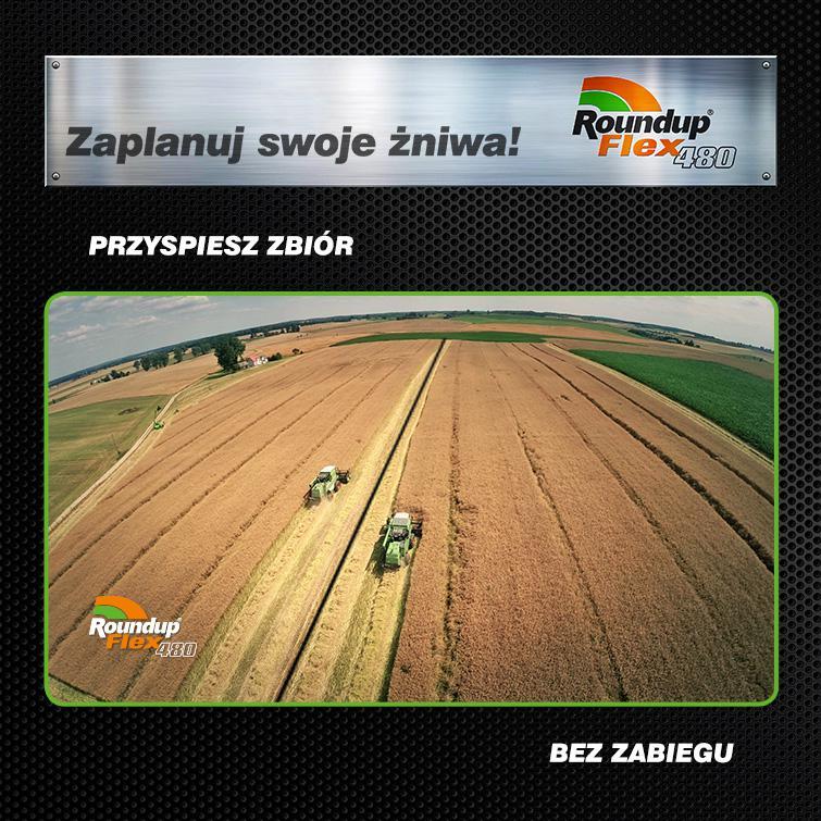 blog-zalety-przedzniwnych-opryskow-pszenicy_1435129929_153152_558a5849b004e.jpg