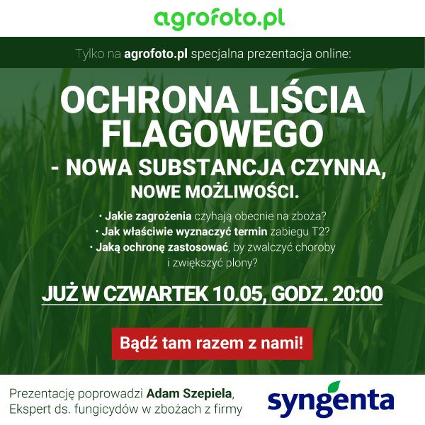 syngenta-600x600.jpg