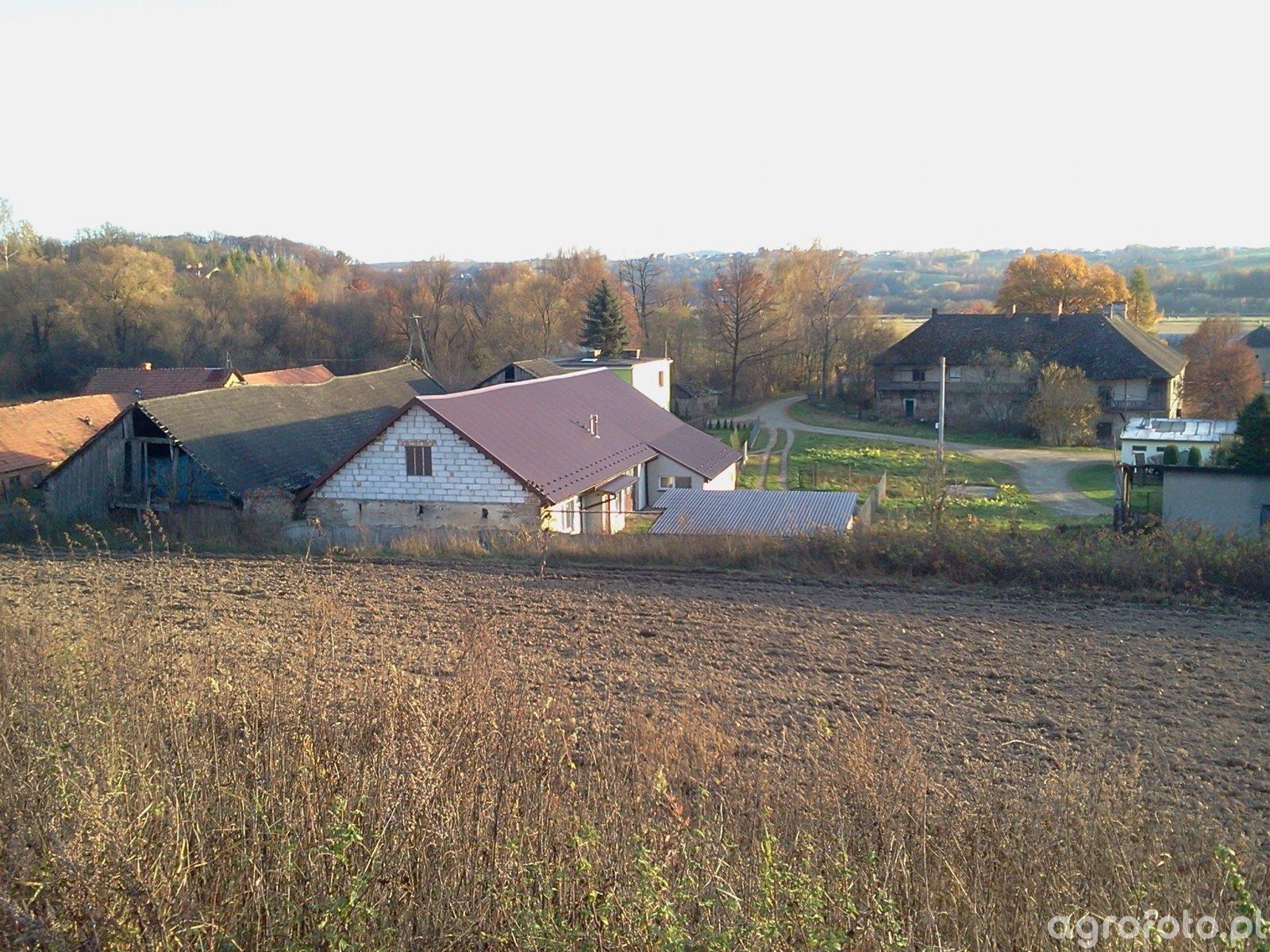 Fotki z mojego gospodarstwa i nie tylko :)
