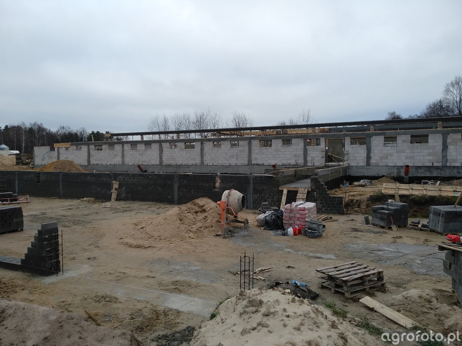 Budowa chlewni