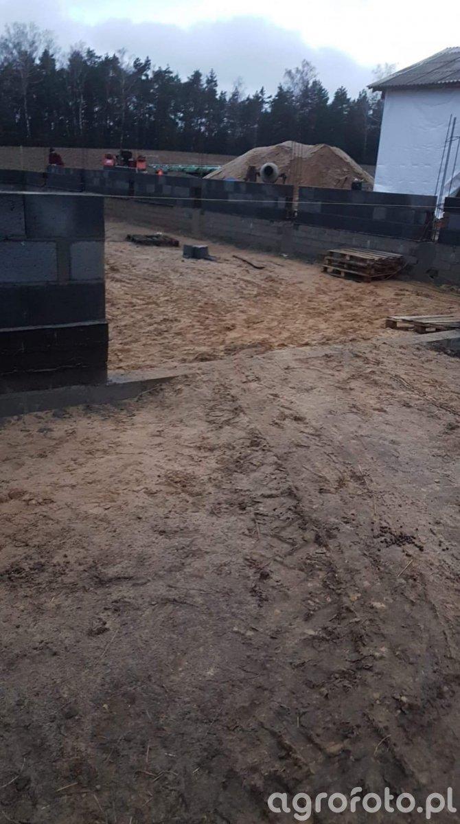 Budowa kacznika