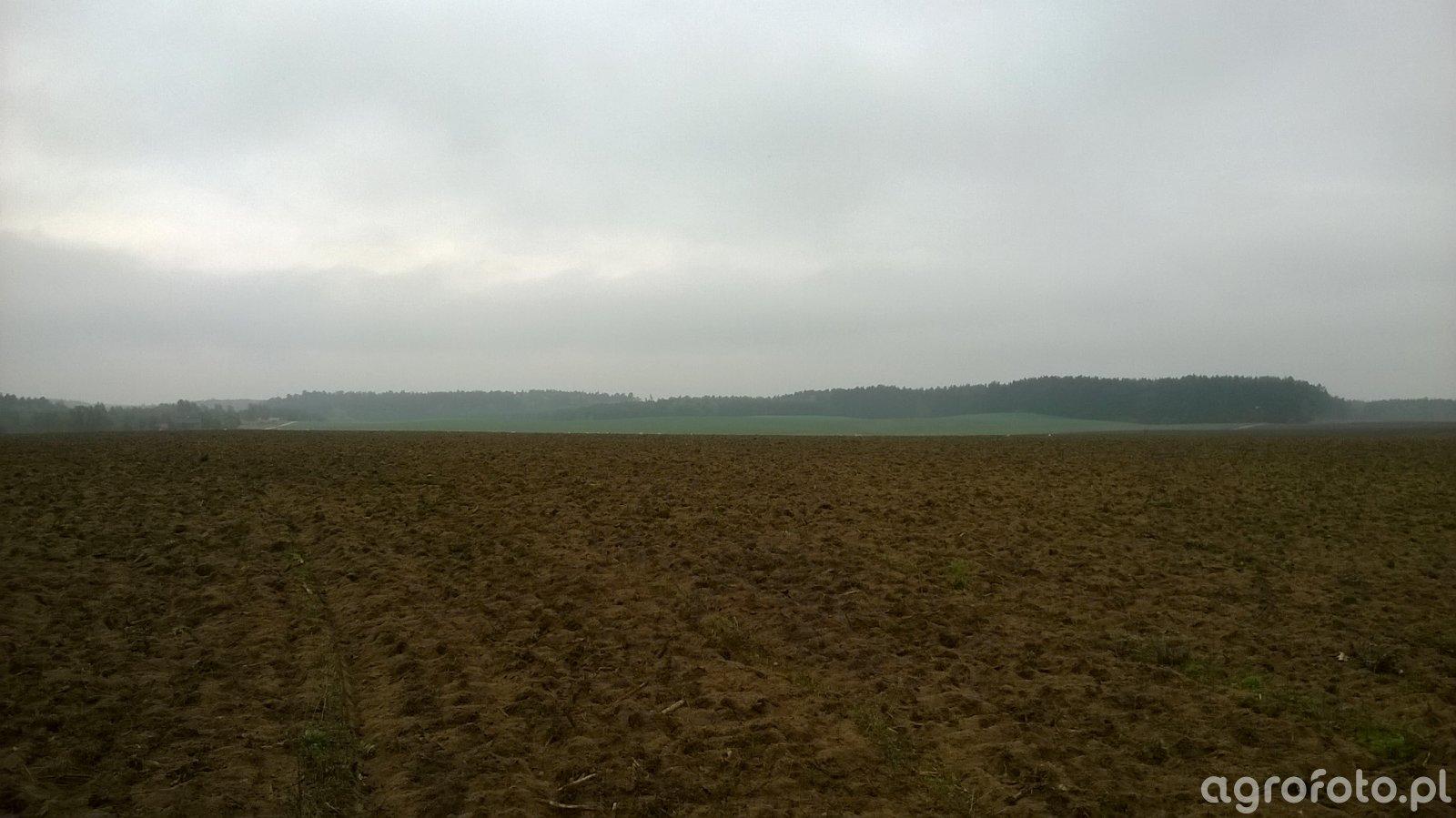 Nowe pola od KOWR