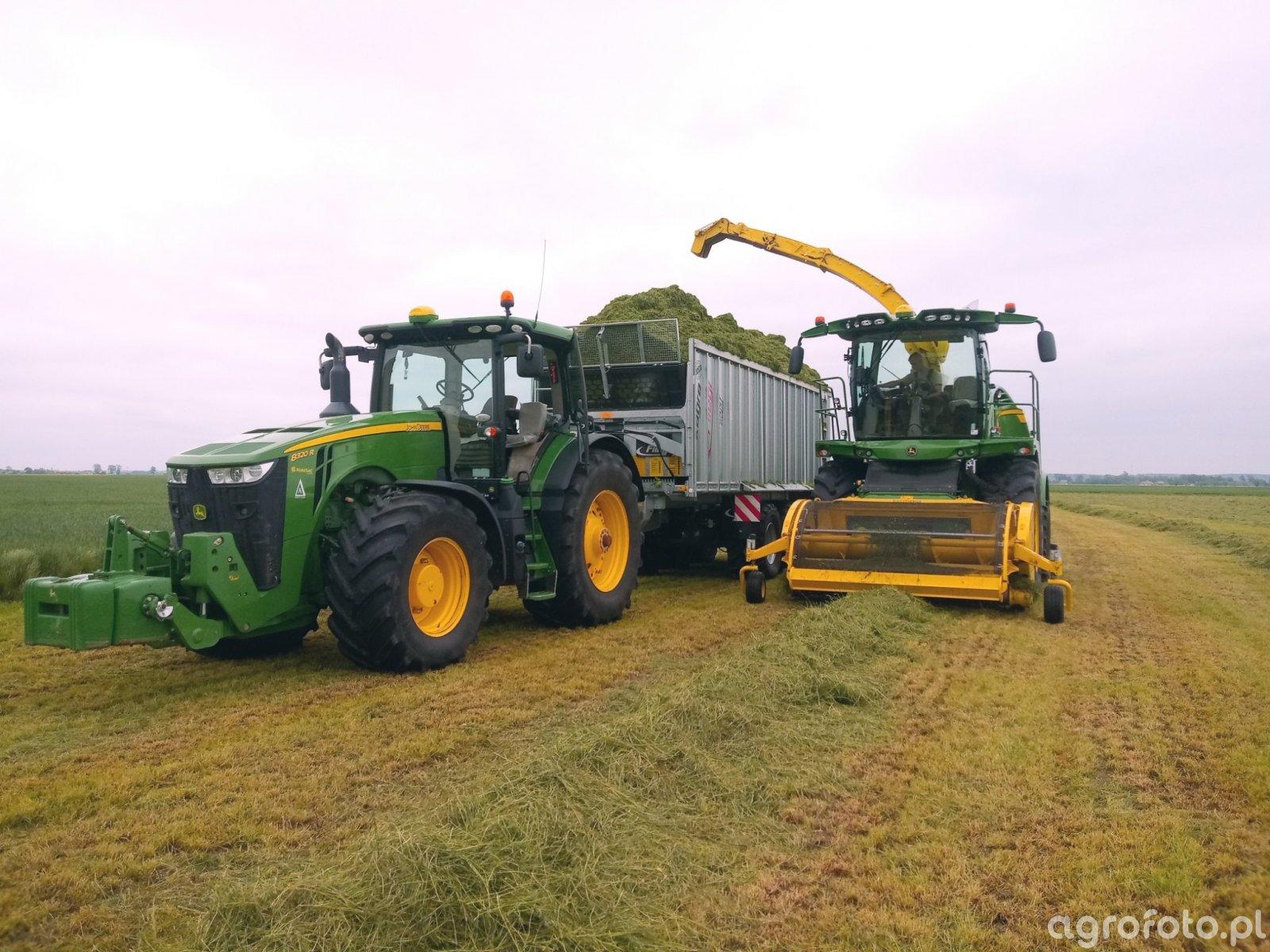 zbiór traw