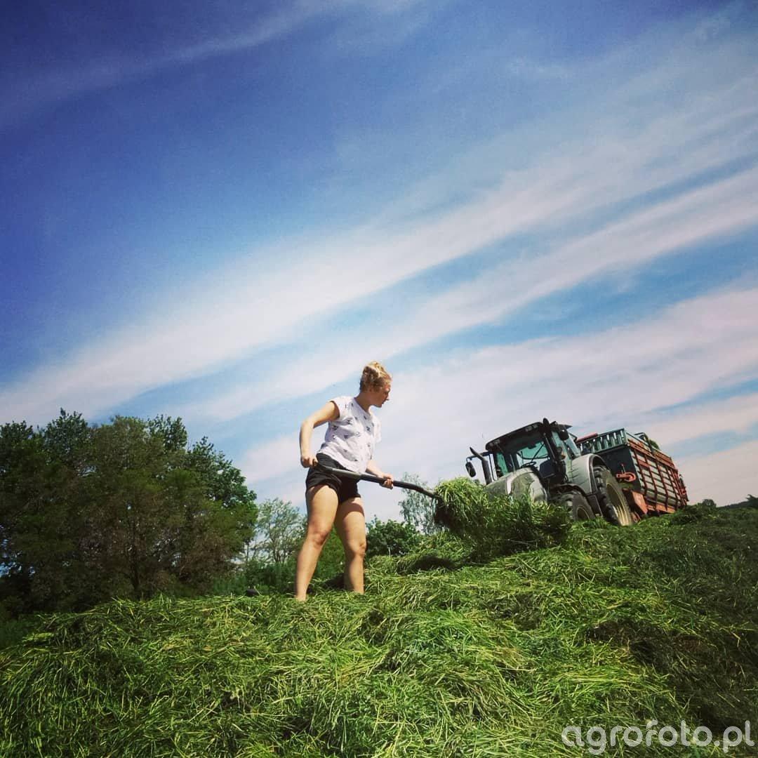 Pryzma z trawy.