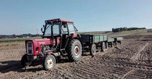Ursus C-360 +7 ton ziemniaka