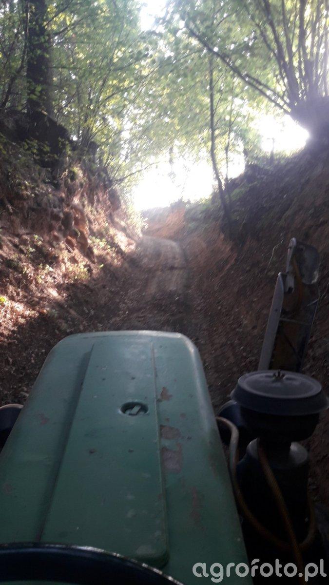 Droga dojazdowa do pola