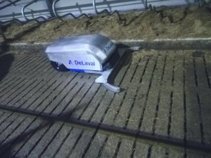 DeLaval RS