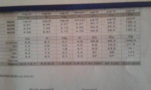 Badanie krwi u krów, biochemia