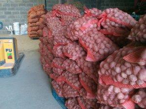 Ziemniaki sortowanie