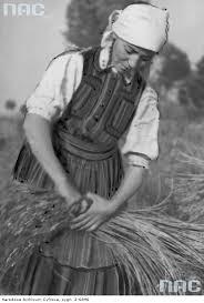 rolniczka11