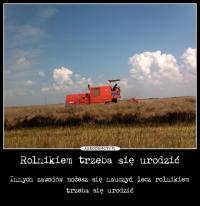 KubaRolnik150