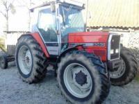 Stacho1244