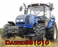 Dawid381010