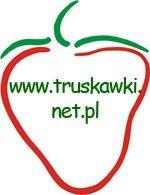 wwwtruskawkinetpl