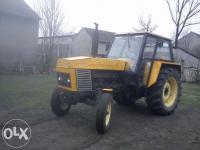 Tomasz531